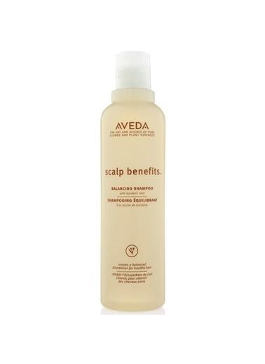 Aveda Aveda Scalp Benefit Balancing Dengeleyici Sülfatsız Şampuan 250Ml Renksiz